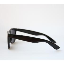 Solglasögon Wayfarer